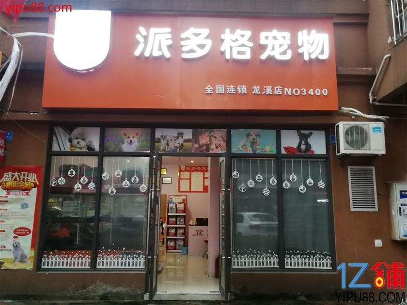 渝北龙溪品牌宠物店转让