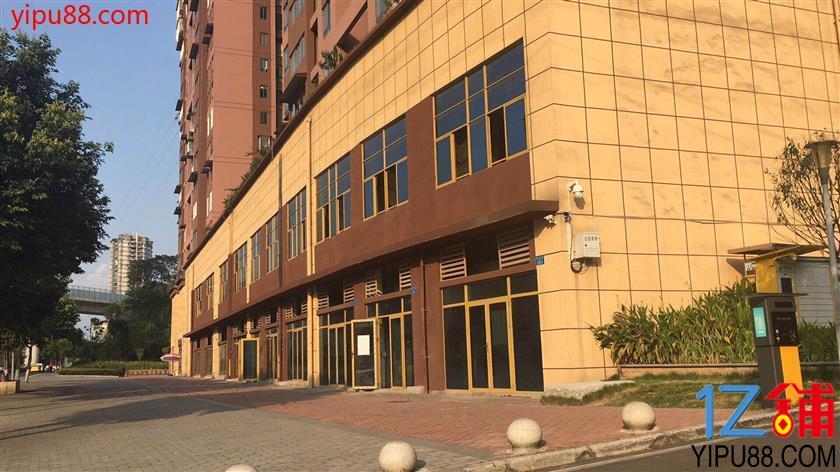 沙坪坝品牌4S店旁200-1000平米旺铺直接出租