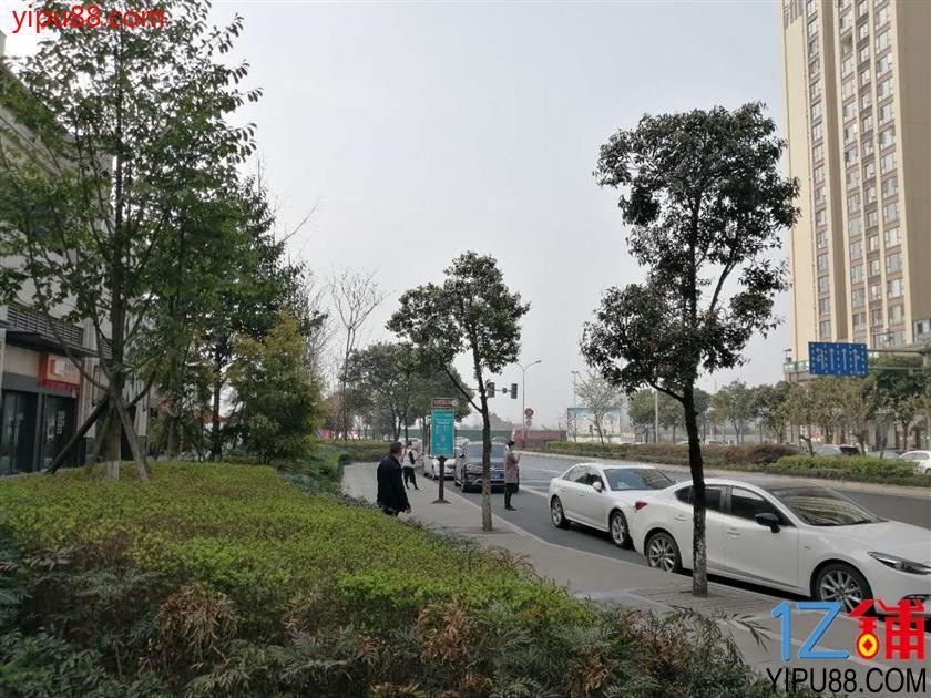 天府四街小区大门口旁128㎡店铺出租,全业态!