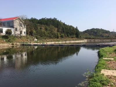 浔龙河、田汉故居附近休闲农庄优价转让
