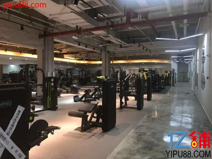 九龙坡装修健身房带设备出租   无转让费