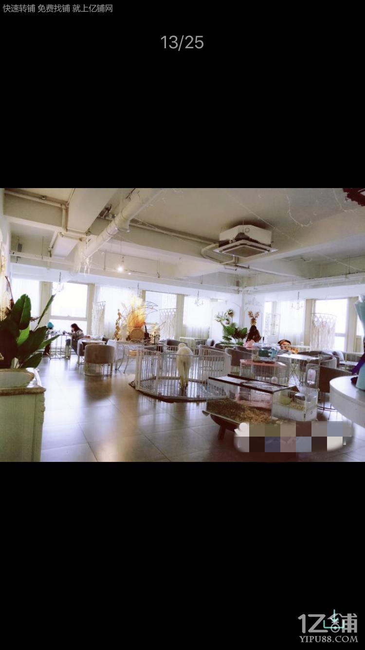 花果园兰花广场咖啡店低价急转